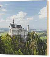 Neuschwanstein Castle Wood Print by Francesco Emanuele Carucci