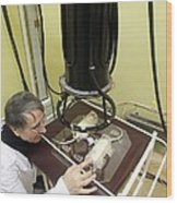 Neutron Therapy Research For Cancer Wood Print by Science Photo Library
