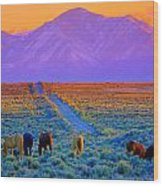 Wild Horse Country  Wood Print by Jeanne  Bencich-Nations