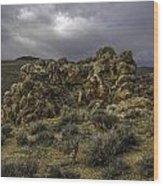 Nevada Desert Skies Wood Print