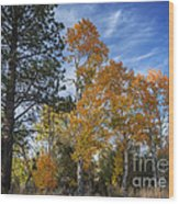Nevada Fall Colors Wood Print