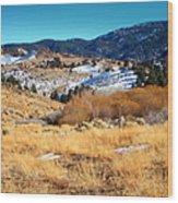 Nevada Landscape Wood Print