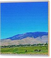 Nevada Range Wood Print