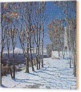 Nevelskoi Square Vladivostok Russia Wood Print