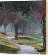 Never-ending Path Wood Print