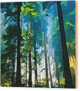Never Never Land Wood Print