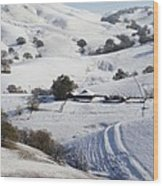 Never Snows In California Wood Print