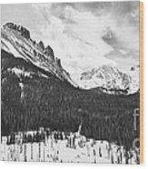 Never Summer Wilderness Area Panorama Bw Wood Print