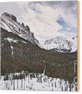 Never Summer Wilderness Area Panorama Wood Print