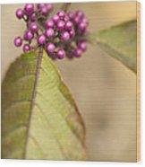 New Berries Wood Print