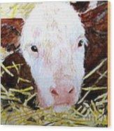 New Born On The Farm Wood Print