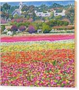 New Carlsbad Flower Fields Wood Print