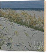 New Dunes On The Atlantic Wood Print