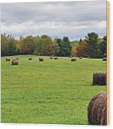 New England Hay Bales Wood Print