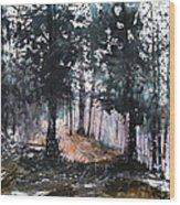New England Landscape No.214 Wood Print