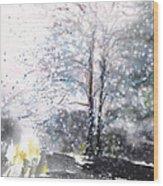 New England Landscape No.222 Wood Print
