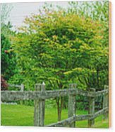 New England Wooden Fence Wood Print