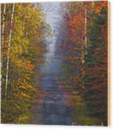 New Hampshire Back Road Wood Print
