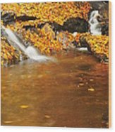 New Hampshire Stream Wood Print by Catherine Reusch Daley
