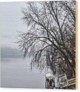 New Hope Ferry Wood Print