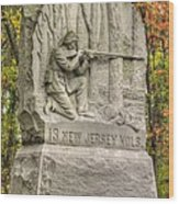 New Jersey At Gettysburg - 13th Nj Volunteer Infantry Near Culps Hill Autumn Wood Print by Michael Mazaika