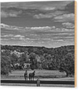 New Jersey Landscape With Horses Wood Print