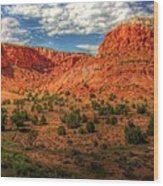New Mexico Mountains 2 Wood Print