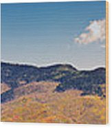 New Mexico Panorama Wood Print