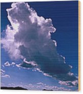 New Mexico Sky Wood Print by Jerry McElroy