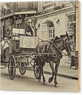 New Orleans - Carriage Ride Sepia Wood Print