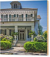 New Orleans Home 5 Wood Print