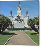 New Orleans - Jackson's Square Wood Print