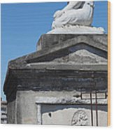 New Orleans Louis Stone Freeze Wood Print