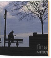 New Orleans Riverwalk Silhouette Wood Print