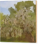 New Orleans Spanish Moss On Live Oaks Wood Print by Christine Till