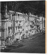 New Orleans St Louis Cemetery No 3 Wood Print by Christine Till