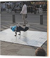 New Orleans - Street Performers - 121228 Wood Print