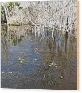 New Orleans - Swamp Boat Ride - 1212104 Wood Print