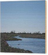 New Orleans - Swamp Boat Ride - 1212107 Wood Print