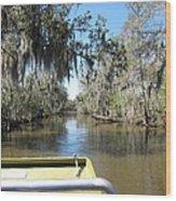 New Orleans - Swamp Boat Ride - 1212123 Wood Print