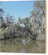 New Orleans - Swamp Boat Ride - 1212133 Wood Print