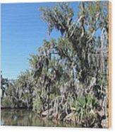 New Orleans - Swamp Boat Ride - 1212135 Wood Print