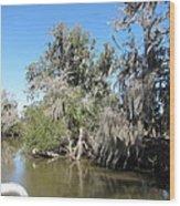 New Orleans - Swamp Boat Ride - 1212141 Wood Print