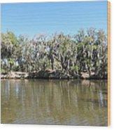 New Orleans - Swamp Boat Ride - 1212150 Wood Print