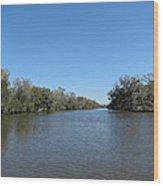 New Orleans - Swamp Boat Ride - 1212154 Wood Print