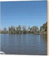 New Orleans - Swamp Boat Ride - 1212155 Wood Print
