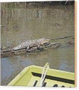 New Orleans - Swamp Boat Ride - 1212160 Wood Print