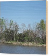 New Orleans - Swamp Boat Ride - 1212161 Wood Print