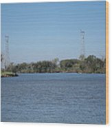 New Orleans - Swamp Boat Ride - 121223 Wood Print