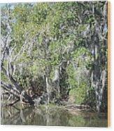New Orleans - Swamp Boat Ride - 121231 Wood Print